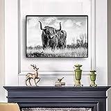 jiushice Schwarz und Weiß Liberty Highland Cow Tier Leinwand ng Poster und Fußabdrücke skandinavischen Yak Wand, Wandkunst für Wohnzimmer 1 50X70CM