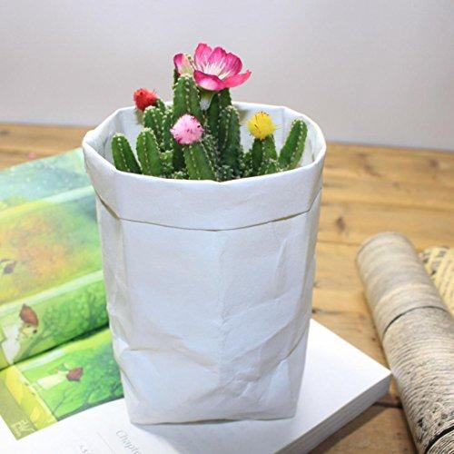 Waschbar Kraft Paper Bag Pflanze