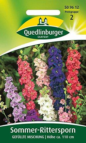 Sommer-Rittersporn Gefüllte Mischung von Quedlinburger Saatgut