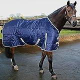 51xhWxQeMOL. SL160  BEST BUY #16.9 Phoenix Medium Weight Regular Neck Horse Stable Rug Quilted Blanket AND Tigerbox® Antibacterial Pen! price Reviews uk
