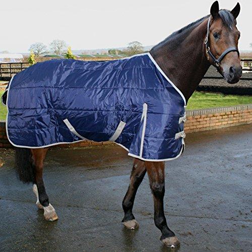 51xhWxQeMOL BEST BUY #16.9 Phoenix Medium Weight Regular Neck Horse Stable Rug Quilted Blanket AND Tigerbox® Antibacterial Pen! price Reviews uk