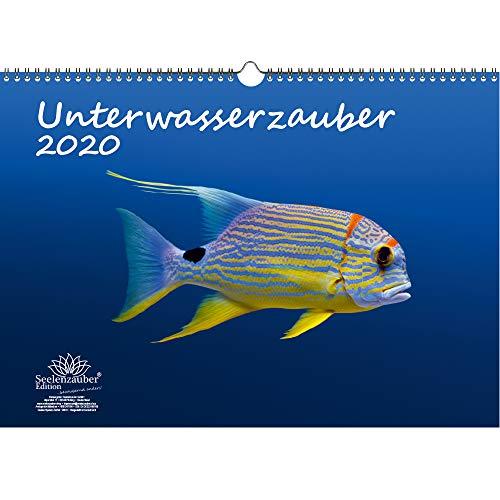 Unterwasserzauber DIN A3 Kalender 2020 Unterwasser Geschenk-Set: Zusätzlich 1 Gruß- und 1 Weihnachtskarte - Seelenzauber