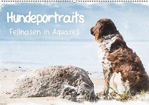 Hundeportraits - Fellnasen in Aquarell (Wandkalender 2019 DIN A2 quer): Wunderschöne Hundeportraits von der Künstlerin und Fotografin Sonja Teßen ... (Monatskalender, 14 Seiten ) (CALVENDO Tiere)