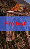 Fire test (Danish Edition)
