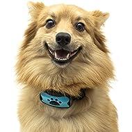 TopDog Advanced 2in1 Dog Anti Bark Collar, No Bark Collar, NO SHOCK, Harmless and Humane, Training and Anti Bark Collar, 7 Adjustable Levels, 2 colour