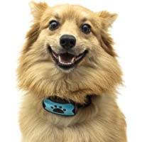 TopDog Anti-Bell-Halsband, hindert Hunde am Bellen mit Ton Vibration, kein Schock, harmlos