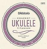 D\'Addario Cordes en titane pour ukulele D\'Addario EJ87C, Concert