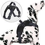 PETBABA Hundegeschirre, Reflektierend Weich Air Mesh Verstellbar Brustgeschirre mit Griff für Hunde - M in Schwarz