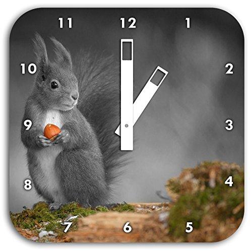 süßes Eichhörnchen mit Nuss schwarz/weiß, Wanduhr Quadratisch Durchmesser 28cm mit weißen eckigen Zeigern und Ziffernblatt, Dekoartikel, Designuhr, Aluverbund sehr schön für Wohnzimmer, Kinderzimmer, Arbeitszimmer