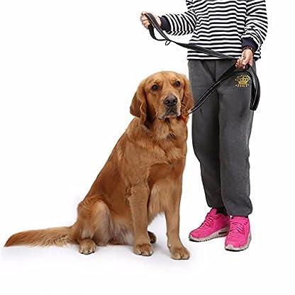 MEKEET Large Dog Lead Leash, 1.5m Double Handles Dog Lead Heavy Duty Strong Nylon Reflective Dog Leash with 2 Padded… 7