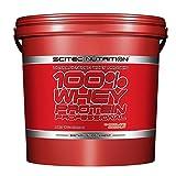 SCITEC Nutrition 100% Whey Protein Professional - 5 kg Vainilla-Mora
