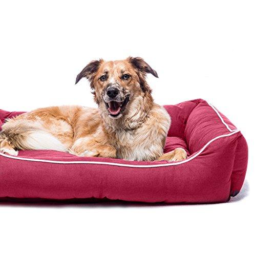 Dog Gone Smart Lounger Hunde Bett (94 x 79 cm) (Beere) (Lounger Hundebett)