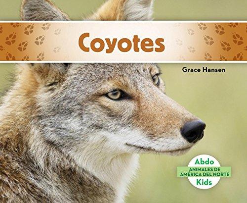 SPA-COYOTES (COYOTES) (Animales de américa del norte / Animals of North America)