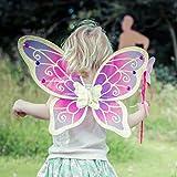 Glitzer Elfen Flügel mit Zauberstab - Feen Kostüm Kinder - Pink und Gold - Lucy Locket für Glitzer Elfen Flügel mit Zauberstab - Feen Kostüm Kinder - Pink und Gold - Lucy Locket
