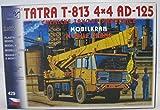 Modellbau Kunststoff Modellbausatz SDV 1:87 H0 LKW Mobil Kran Tatra T813 4x4 AD Chemiewerk Pardubice 125 Fahrzeuge Ostblock