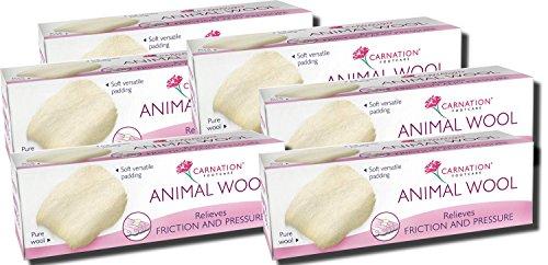 pack-of-6-carnation-animal-wool-25g