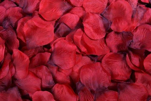 flomansr-400-rote-rosenbluten-rosenblatter-streublumen-hochzeit-deko-valentinstag-fasching