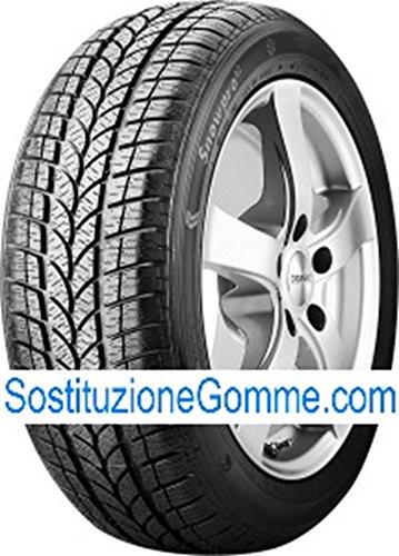 Cormorano g80752022545r17h–e/e/73db–winter pneumatici