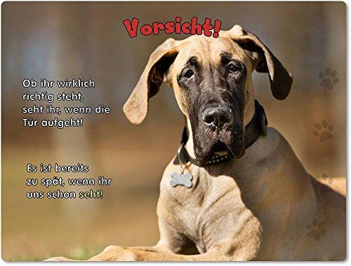 Blechschild / Warnschild / Türschild - Aluminium - 15x20cm - mit Spruch - Motiv: Dogge Harlekin Dogge Deutsche Dogge - 04 (Harlekin Dogge)