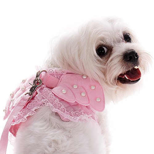 Hund- und Katzengeschirr mit Laufleine zum Spazierengehen, mit schicken Engelsflügeln. Kostüm für kleine Welpen, Kätzchen und Kaninchen