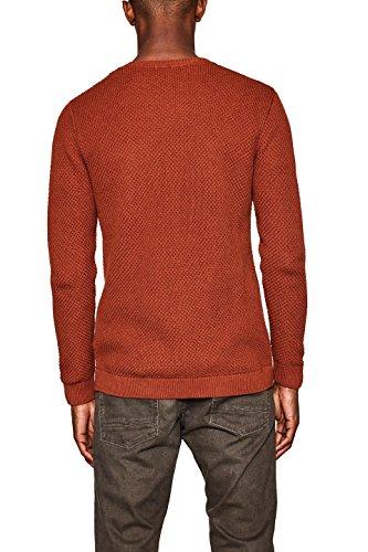 ESPRIT Herren Pullover Orange (Cinnamon 800)