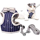 MyfatBOSS Cat Leash, Cat Harness and Leash, Adjustable Pet Mesh Vest Leashes
