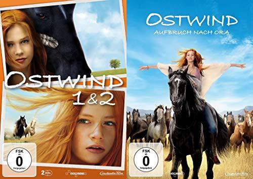 DVD Größe