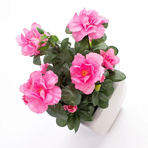 artplants Set 2 x Azaleen TABITA, rosa Blüten, grüne Blätter, in Keramiktöpfen, 20cm – Kunstblumen/Dekoration Kunstpflanzen