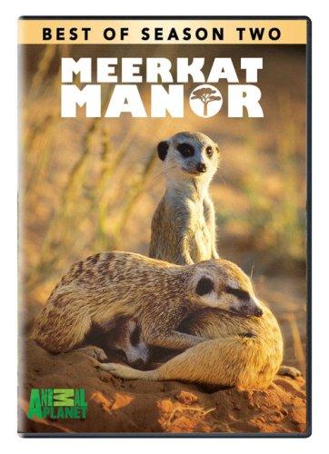 meerkat-manor-best-of-season-2-dvd-2006-region-1-us-import-ntsc