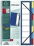 Exacompta 55322E Ordnungsmappe mit festem Deckel 3 mm, Gummizug und dehnbarem Faltenrücken, 7 Fächer, Ordonator, für