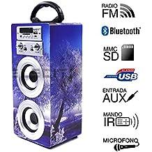 Altavoz Portátil Karaoke con Bluetooth USB SD Micrófono Radio (E025-4)