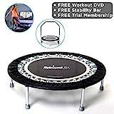 Maximus Life Pro Gym Rebond avec DVD pour Les débutants, Niveaux intermédiaire et avancé