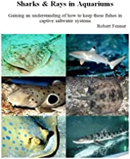 Sharks & Rays in Aquariums: Gaining an understanding of how to keep these fishes in captive saltwater sys