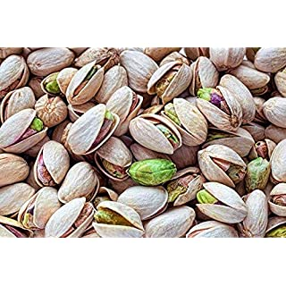 PLAT FIRM Germination Seeds: Nut Tree Pistachios Seeds Pistacia Rare Outdoor Fruit Tree 10 Seeds
