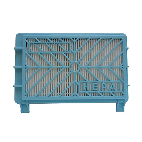 Deylaying HEPA Remplacement Filtre pour Philips Aspirateur FC8732 FC8714 FC8733 FC8716 FC8712 FC8724 FC8613 FC8614