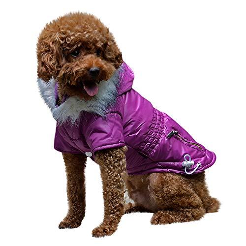 Amphia - Hunde KostüM,Haustier Hund Pelzkragen Mantel Baumwolle Jacke Kleidung - Haustier Hund Katze Welpen Winter warme Kleidung Kostüm Jacke Mantel ()