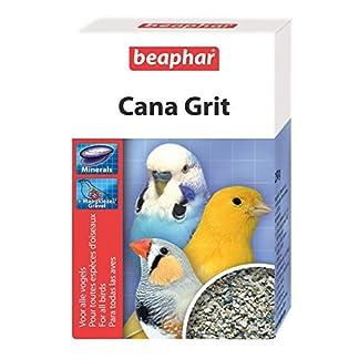 beaphar cana grit 250g (pack of 2) Beaphar Cana Grit 250g (PACK OF 2) 51xlH3aAWOL