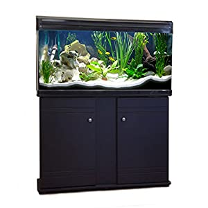 Aquarium Fish Tank & Cabinet (80cm / 120L, Black)