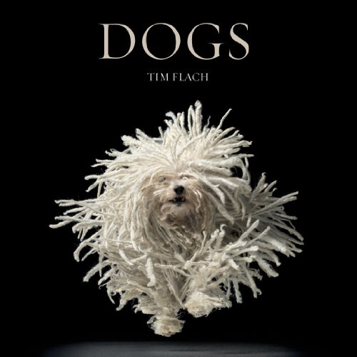 Dogs: by Tim Flach