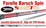 Sänger Sensitec Forelle Barsch Spin
