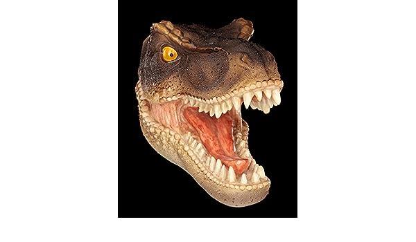Dinosaurier Schädel Wandrelief Triceratops Figur Dino Skelett