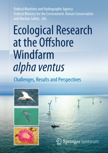 ecological-research-at-the-offshore-windfarm-alpha-ventus-challenges-results-and-perspectives