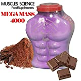 Muscle science Weight Gainer Chocolate Flavour, 3kg (UR27)