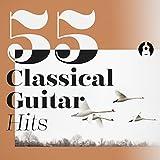 Mandolin Concerto in C Major, RV 425: I. Allegro (Arr. for Solo Guitar)