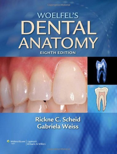 Woelfel's Dental Anatomy: Its Relevance to Dentistry by Rickne C. Scheid DDS MEd (2011-01-04)