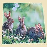 Tovaglia coniglietto pasquale in erba colore verde, verde, 40 x 40 cm