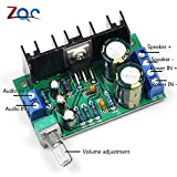 #1: Lepakshi Tda2050 Dc 12-24V 10-30W Amp Mono Audio Amplifier Board Module Single P
