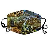 Daawqee Mund Maske, Green Iguana Reptiles Nature Lizard Adult Creative Anti Staub Schutzhülle Washable Safety 100% Polyester Comfortable Breathable Health Half Face Masks