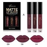 Lippenstift, HARRYSTORE 3PCs Frauen Mode Wasserdichter Matte Liquid Lipstick Feuchtigkeitsspendende Lip Gloss Kit (A)