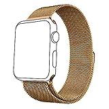 FunDoris ® Band, Edelstahl Milanaise Apple Watch Band Ersatz-Armband mit kraftvoller Magnetverschluss Verschluss für Apple Armbanduhr 38mm/42mm, Kinder Herren damen, Milanese-Gold